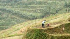 Farmer working in terraced paddy field Stock Footage