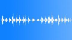 Steps in leaf mold Sound Effect