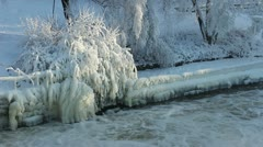 Ice covered trees besides a river - stock footage