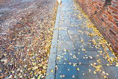 antique road - via degli angeli at autumn day in ferrara - stock photo