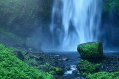 Multnomah Falls - stock photo