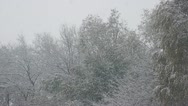Snowfall 04 Stock Footage