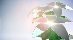 Abstract 3D Flower. Background. Loop. - stock footage