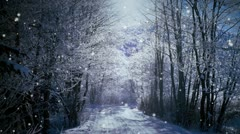 Snow in the forest Stock Footage