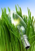 Stock Photo of lamp in a grass