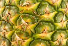 juicy pineapple - stock photo
