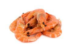 shrimp isolated - stock photo