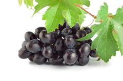 fresh blue grape isolated - stock photo