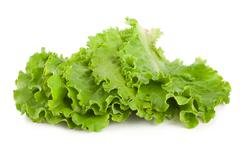 leaves lettuce - stock photo
