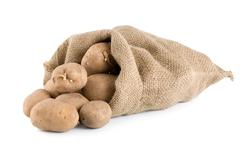 raw potatoes isolated - stock photo
