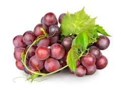 Dark blue grapes with a vine Stock Photos