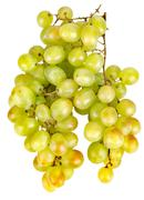 Bunch of green grapes Stock Photos