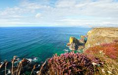 Landscape cornwall sea cliffs heather Stock Photos