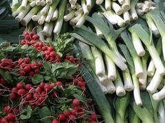 Leeks and radishes Stock Photos