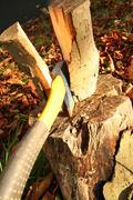 chop wood - stock photo
