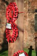 poppy grave remembrance - stock photo