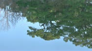Stock Video Footage of water reflection