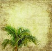 Old paper background with palm leaf Stock Photos