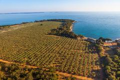 mediterranean landscape - stock photo