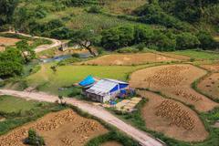 fields in vietnam - stock photo