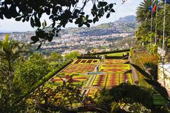 Botanic garden, funchal Stock Photos