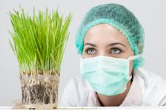 genetic modified plant Stock Photos
