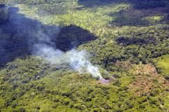 Destroying the rainforest in ecuador to plant oil palms (growing in top half Stock Photos
