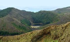 Overgrown hills at the azores Stock Photos