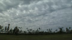Rolling clouds over trees Stock Footage