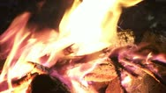 Burning Campfire, the Everglades Florida Video Stock Footage