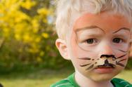 Stock Photo of face paint tiger boy child