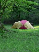 camp in summer forest - stock photo