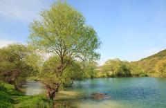 beautiful  spring lake - stock photo