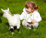 Stock Photo of child and little goat.jpg