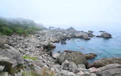 Misty summer stony coast landscape Stock Photos