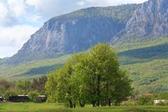 spring mountains landscape (crimea, ukraine) - stock photo