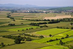 agricultural landscape - stock photo