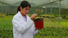 Woman holding a plant Stock Footage