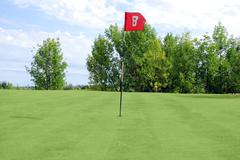 Golf red flag.JPG Stock Photos