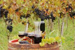 Red wine and grape.JPG Stock Photos