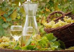 white wine and grape.JPG - stock photo
