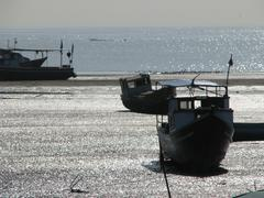 Fishing boats up on the beach at low tide (HD)c Stock Photos