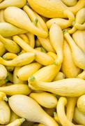 Yellow or crook neck squash on display Stock Photos