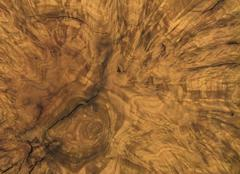 Brown burl wood detail Stock Photos