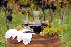 Autumn scene with red wine and grape.JPG Stock Photos