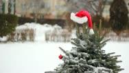 Santa Claus cap on a fir tree Stock Footage