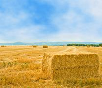 straw bales on farmland - stock photo