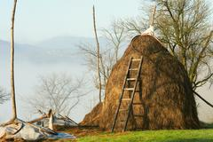 rural scene haystack - stock photo