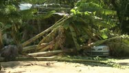 Stock Video Footage of Hurricane Storm Surge Destruction And Aftermath