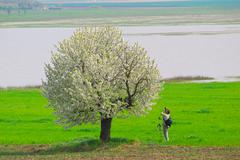Photographer photographing spring tree.JPG Stock Photos